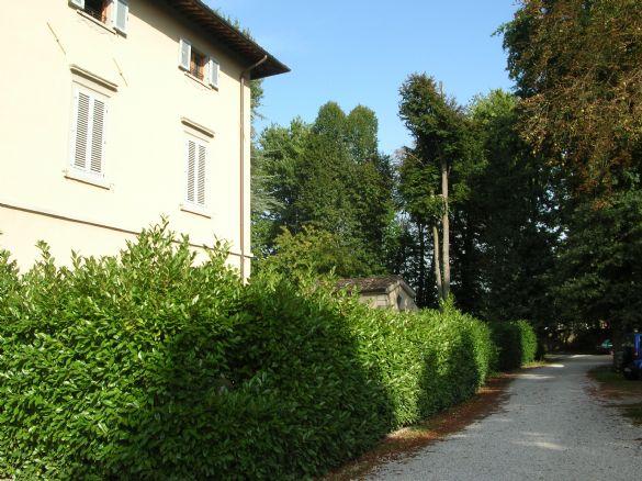 Appartamento in affitto a Borgo San Lorenzo, 4 locali, prezzo € 700 | Cambio Casa.it