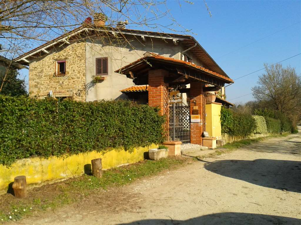 Azienda Agricola in Vendita a Vicchio