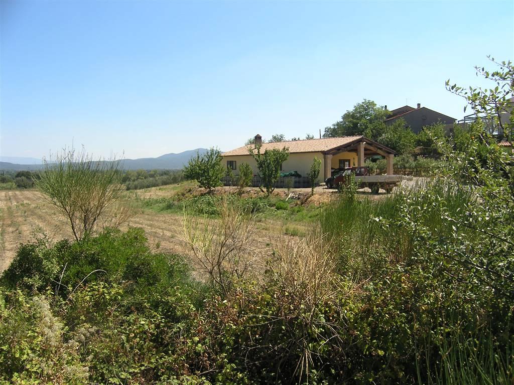 Azienda Agricola in vendita a Roccastrada, 8 locali, zona Zona: Montemassi, prezzo € 980.000 | Cambio Casa.it