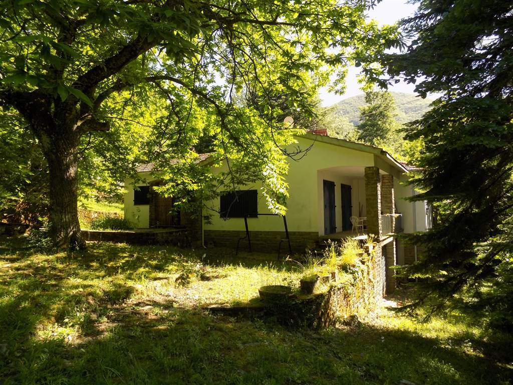 Villa in vendita a San Godenzo, 9 locali, zona Zona: Castagno d'Andrea, prezzo € 128.000 | CambioCasa.it