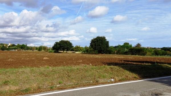 Terreno Agricolo in vendita a Montemarciano, 9999 locali, zona Località: CASALE ALBERICCI, prezzo € 200.000 | Cambio Casa.it