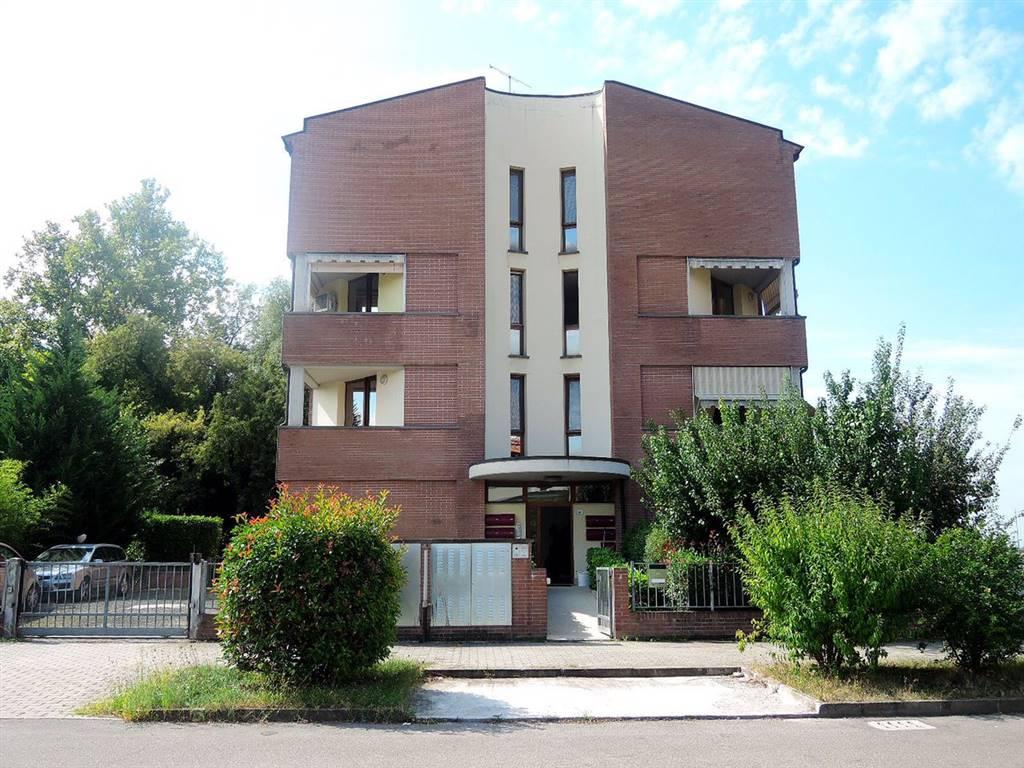 Appartamento in Vendita a Minerbio