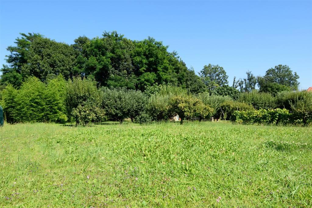 Terreno Edificabile Residenziale in vendita a Cossato, 9999 locali, prezzo € 65.000 | Cambio Casa.it