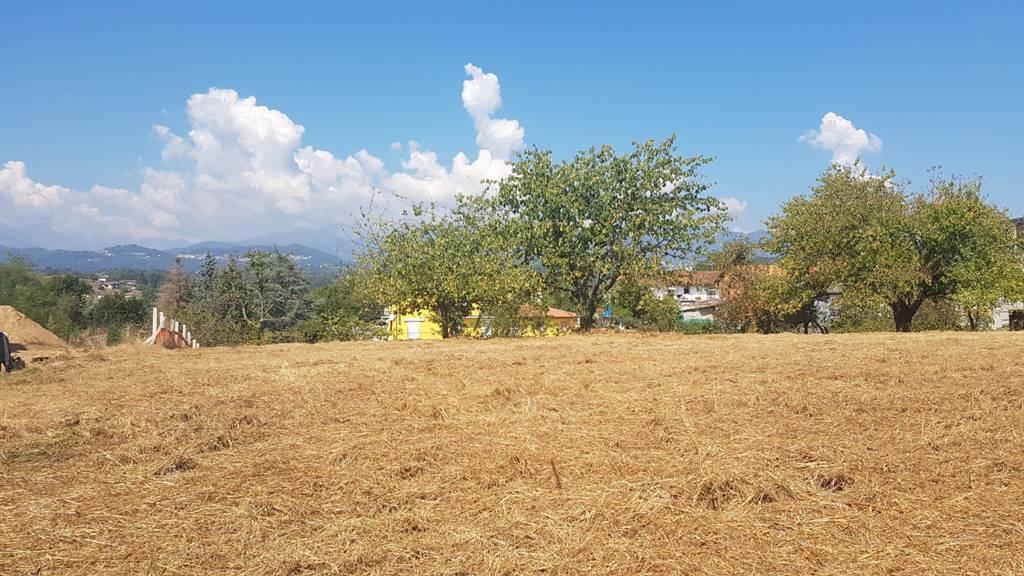 Terreno Edificabile Residenziale in vendita a Cossato, 9999 locali, zona Località: PARLAMENTO, prezzo € 68.000 | Cambio Casa.it