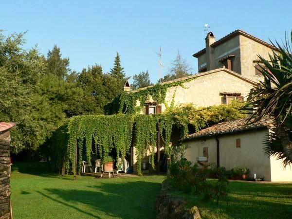 Rustico / Casale in vendita a Penna in Teverina, 12 locali, prezzo € 820.000 | CambioCasa.it