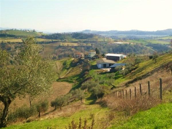 Azienda Agricola in vendita a Montebuono, 9999 locali, zona Zona: Fianello, prezzo € 850.000 | Cambio Casa.it