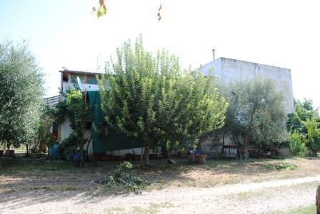 Terreno Agricolo in vendita a Matera, 9999 locali, prezzo € 75.000 | Cambio Casa.it