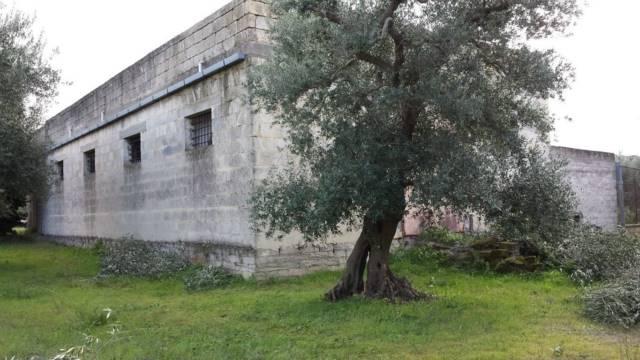 Capannone in Vendita a Matera