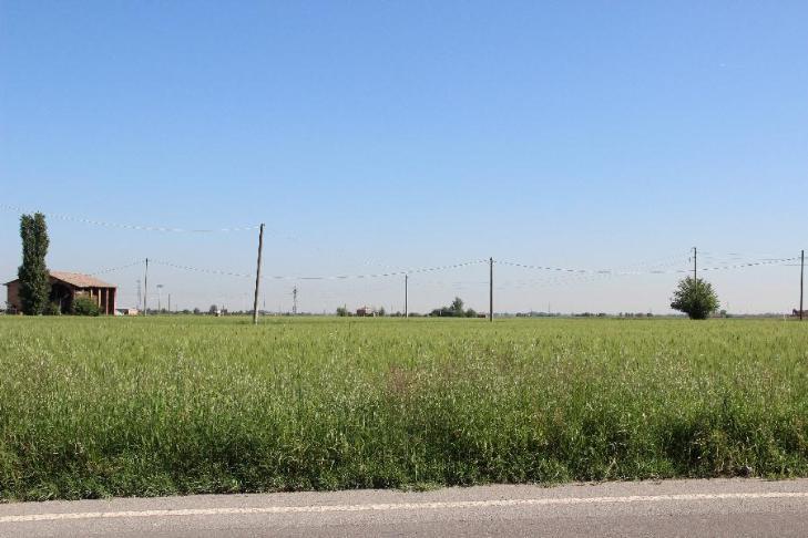 Terreno commerciale in Vendita a Calderara Di Reno: 560000 mq