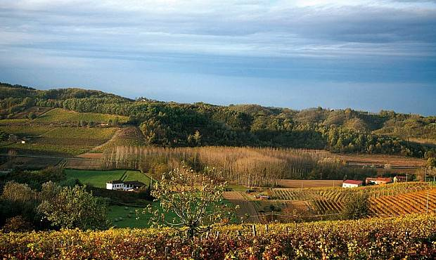 Azienda Agricola in vendita a Predosa, 10 locali, Trattative riservate | CambioCasa.it