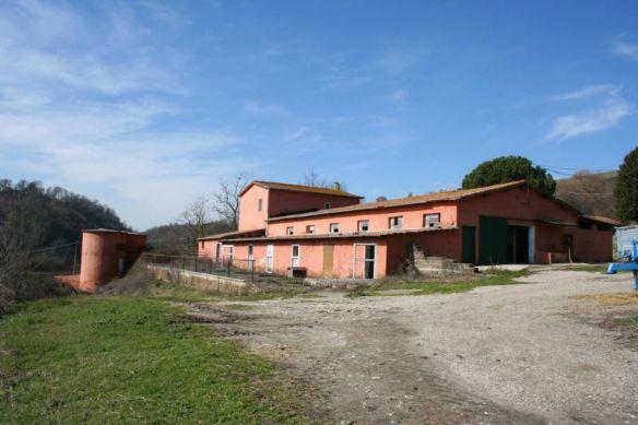 Aziende agricole Roma in vendita e in affitto. Cerco Azienda agricola Roma e provincia su ...