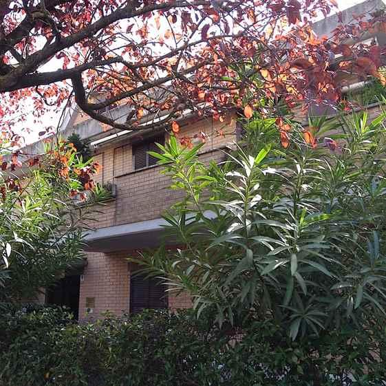 Trilocale, Forano, in ottime condizioni