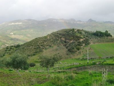 terreno  in Vendita a Caltabellotta
