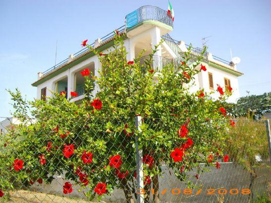 Appartamento in affitto a Menfi, 4 locali, zona Località: LIDO FIORI, Trattative riservate | Cambio Casa.it