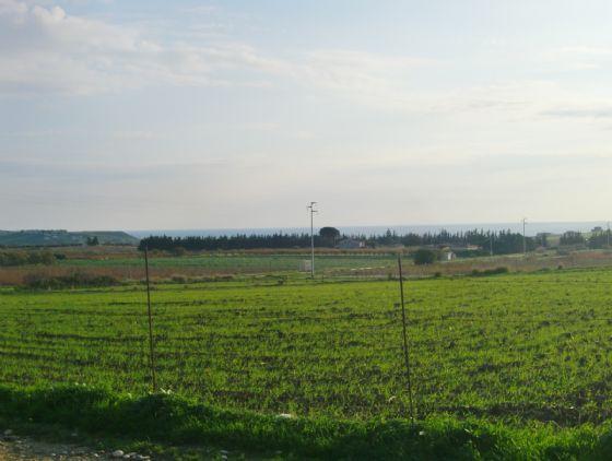 Terreno vendita MENFI (AG) - 7 LOCALI - 8300 MQ