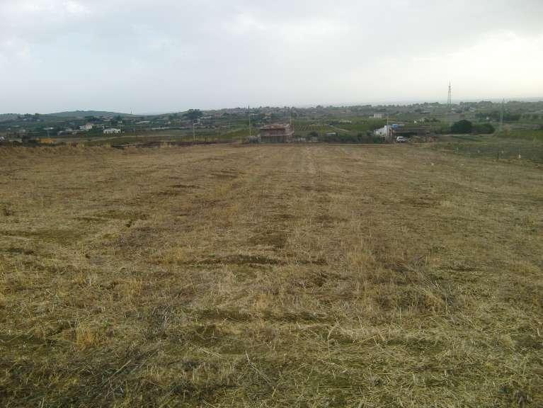 Terreno Agricolo in vendita a Menfi, 9999 locali, zona Località: LIDO FIORI, prezzo € 45.000 | Cambio Casa.it