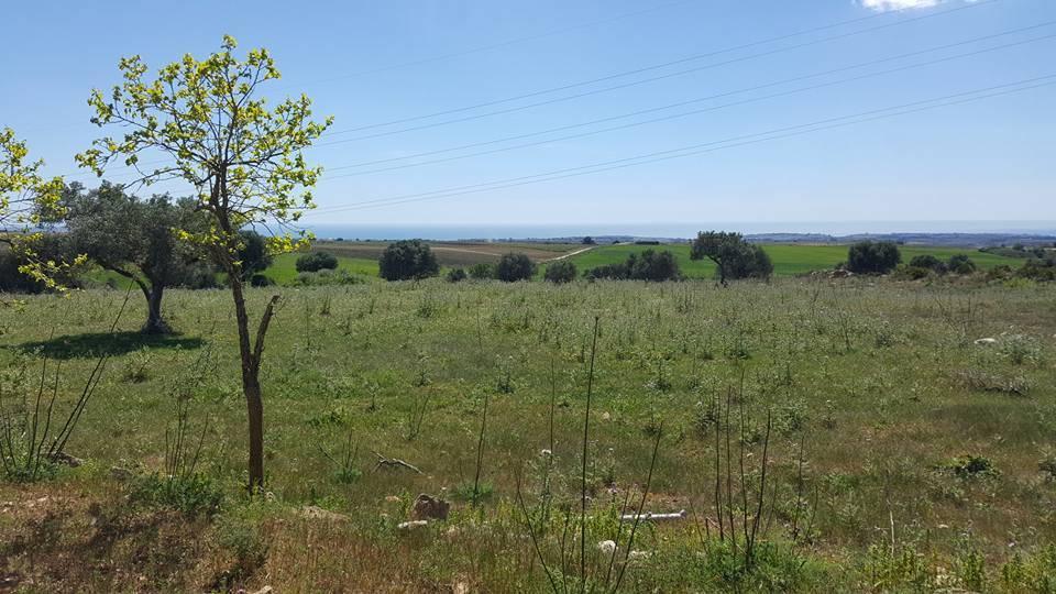 Terreno Agricolo in vendita a Menfi, 9999 locali, prezzo € 75.000 | Cambio Casa.it