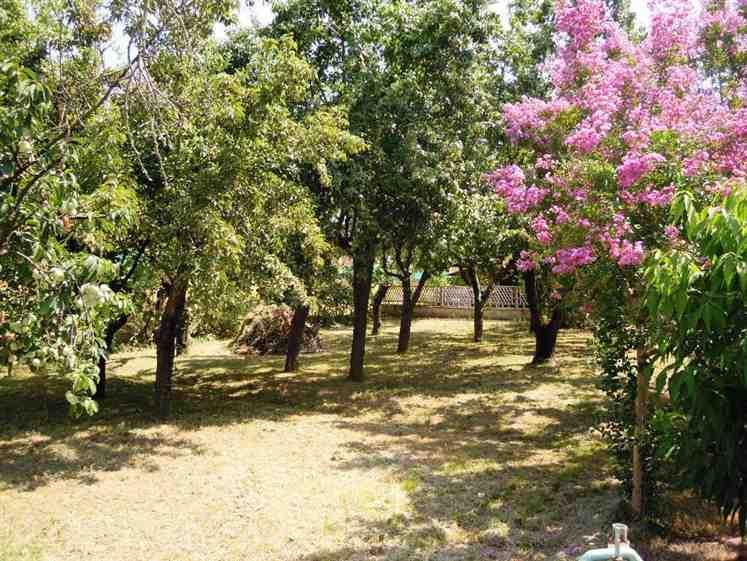 Appartamento in vendita a Caorso, 3 locali, zona Zona: Fossadello, prezzo € 89.000 | Cambio Casa.it