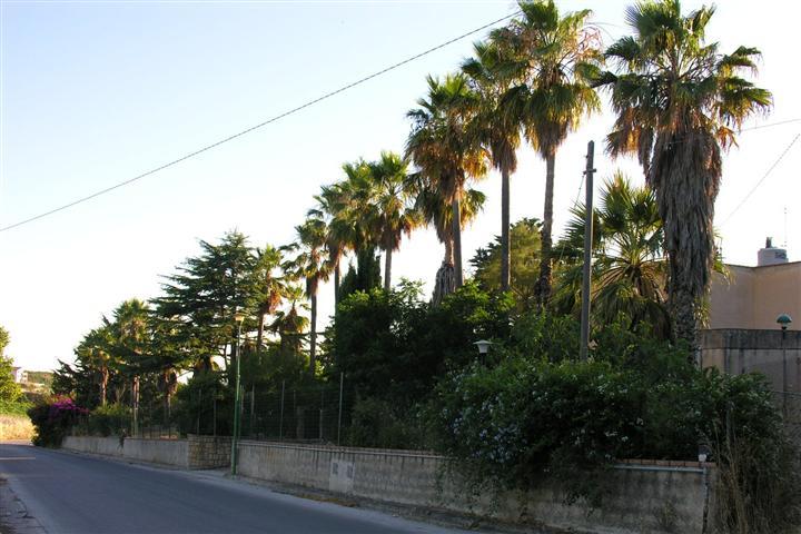 Villa in vendita a Salemi, 6 locali, zona Località: FONTANABIANCA, prezzo € 199.000 | Cambio Casa.it