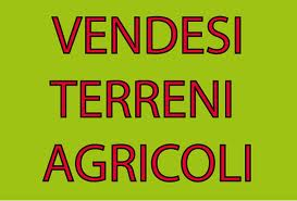 Terreno Agricolo in Vendita a Ponte Buggianese