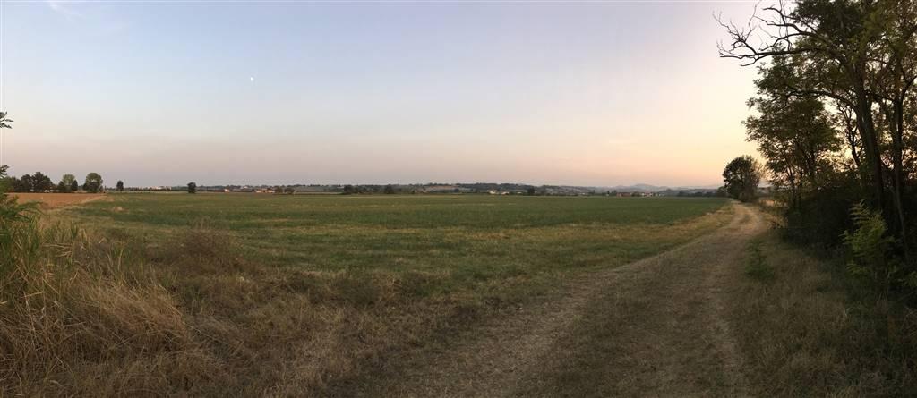 Terreno Agricolo in vendita a Fidenza, 9999 locali, zona Zona: Ponte Ghiara, Trattative riservate | Cambio Casa.it