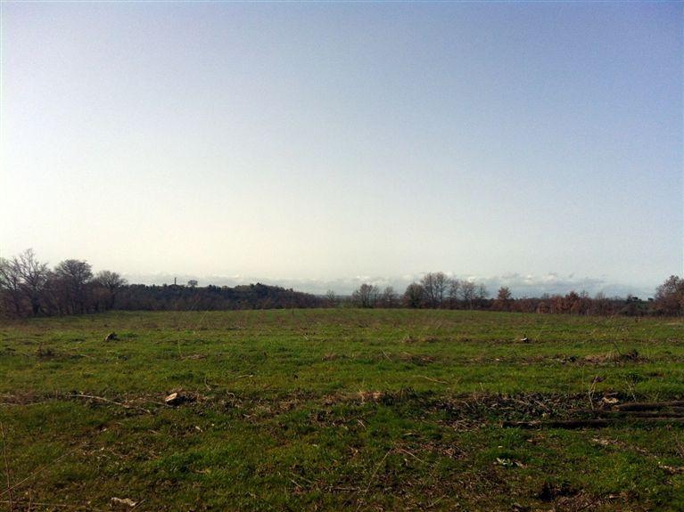 Terreno Agricolo in vendita a Viterbo, 9999 locali, zona Zona: Periferia, prezzo € 150.000 | Cambio Casa.it