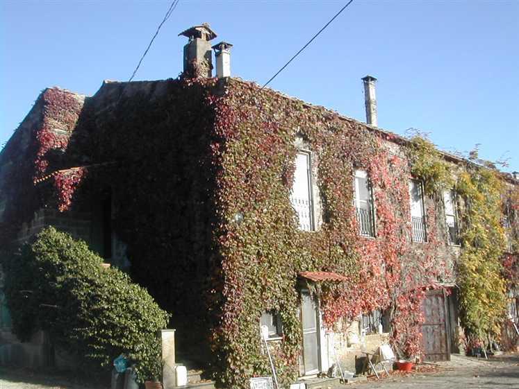Rustico / Casale in vendita a Bomarzo, 16 locali, prezzo € 400.000 | CambioCasa.it