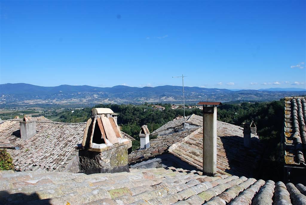 Soluzione Indipendente in vendita a Civitella d'Agliano, 3 locali, prezzo € 38.000 | CambioCasa.it