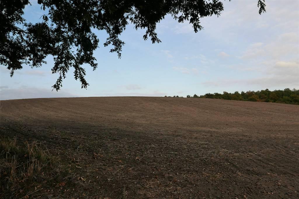 Terreno Agricolo in vendita a Celleno, 9999 locali, prezzo € 220.000 | CambioCasa.it