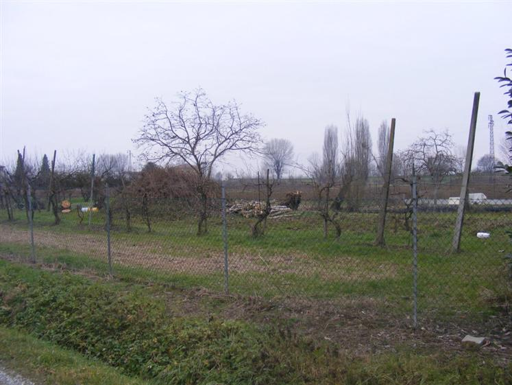 Terreno Agricolo in vendita a Malalbergo, 9999 locali, zona Zona: Altedo, prezzo € 62.000 | Cambio Casa.it