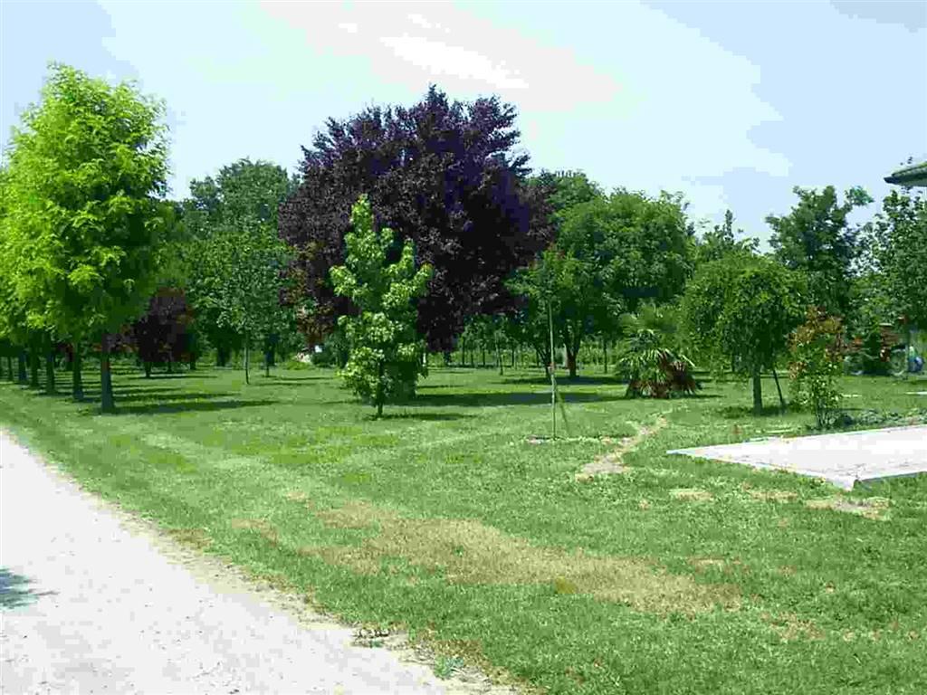 Terreno Agricolo in vendita a Bentivoglio, 9999 locali, prezzo € 140.000 | Cambio Casa.it