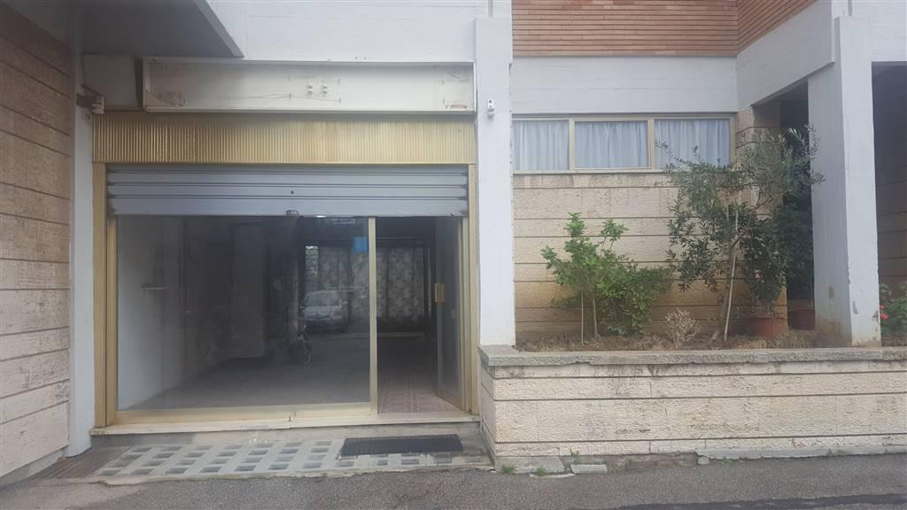 negozio  in Affitto a Livorno