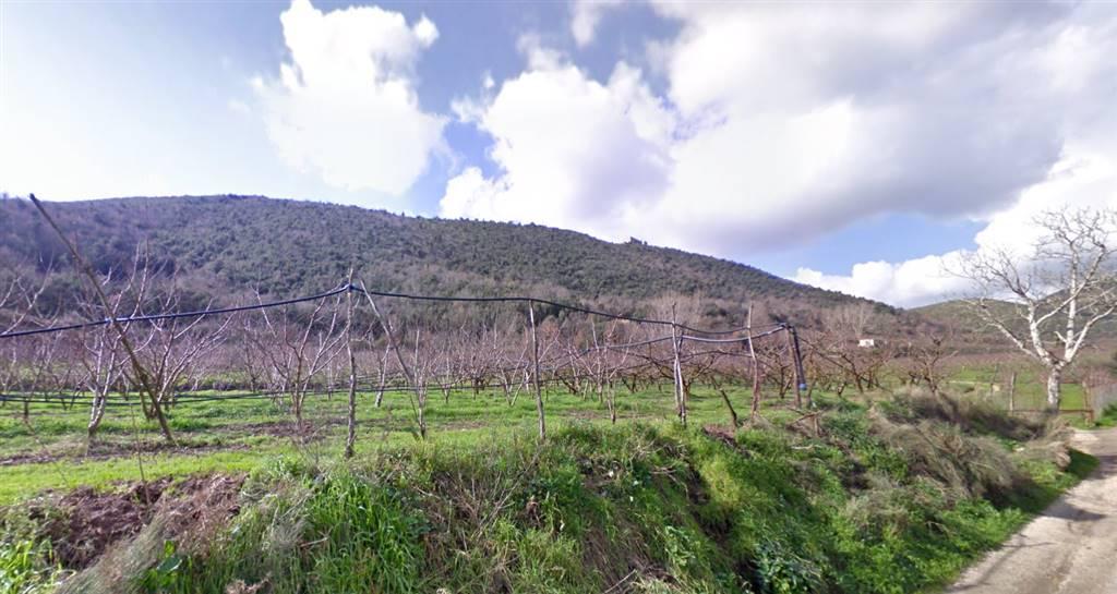 Terreno Agricolo in vendita a Pontelatone, 9999 locali, prezzo € 285.000 | Cambio Casa.it
