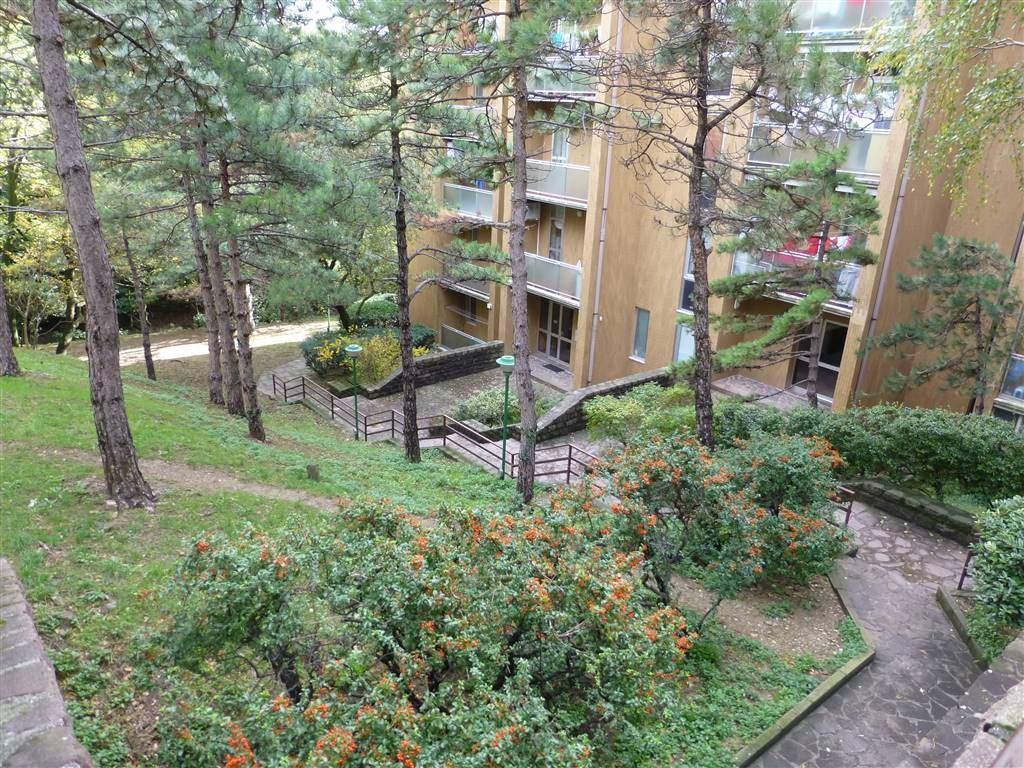 A Trieste in Vendita Appartamento