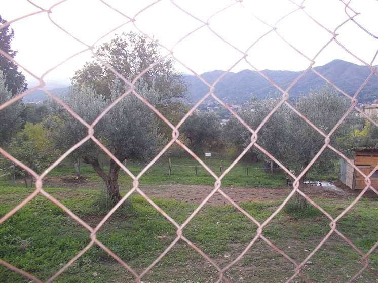 Terreno Edificabile Residenziale in Vendita a Castrolibero