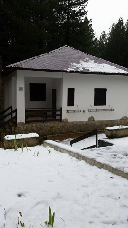 Villa in affitto a Spezzano della Sila, 6 locali, zona Zona: Camigliatello Silano, Trattative riservate | Cambio Casa.it