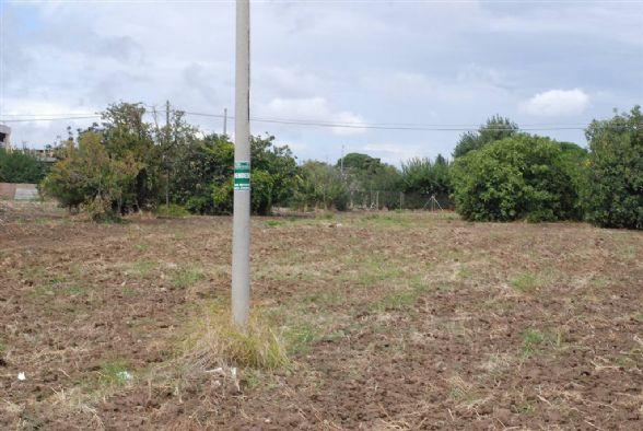 Terreno Agricolo in vendita a Latiano, 9999 locali, zona Località: ZONA 167, prezzo € 20.000 | CambioCasa.it