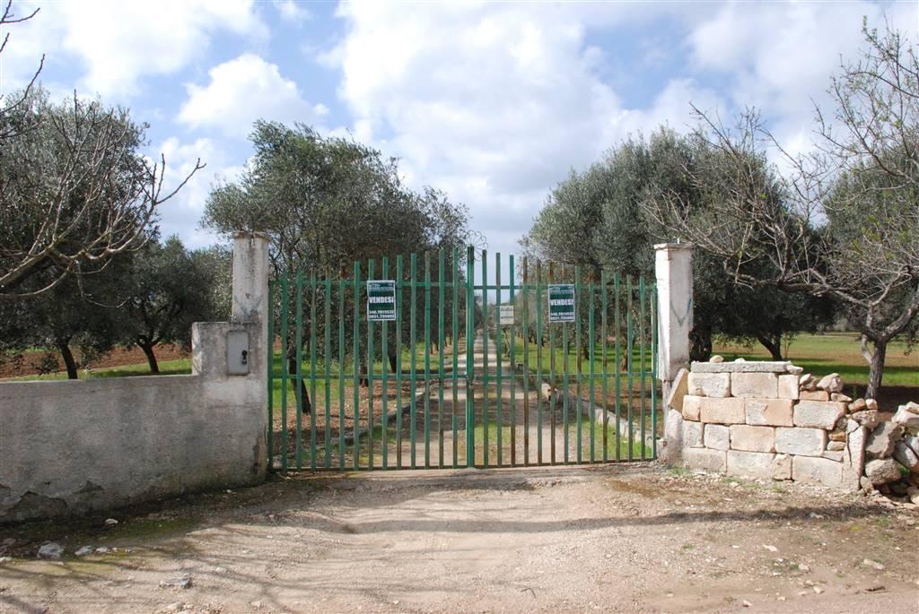 Terreno Agricolo in vendita a Latiano, 9999 locali, prezzo € 65.000 | Cambio Casa.it