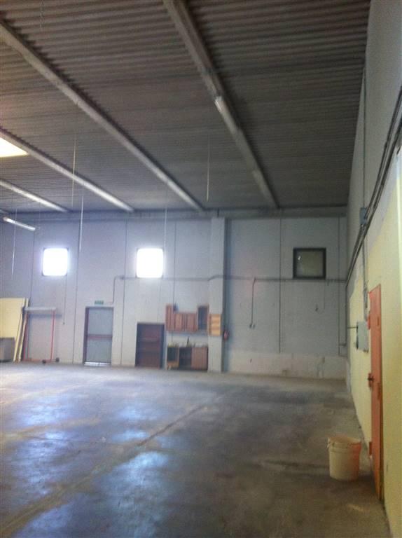 Capannone in affitto a Collesalvetti, 1 locali, prezzo € 1.200 | Cambio Casa.it
