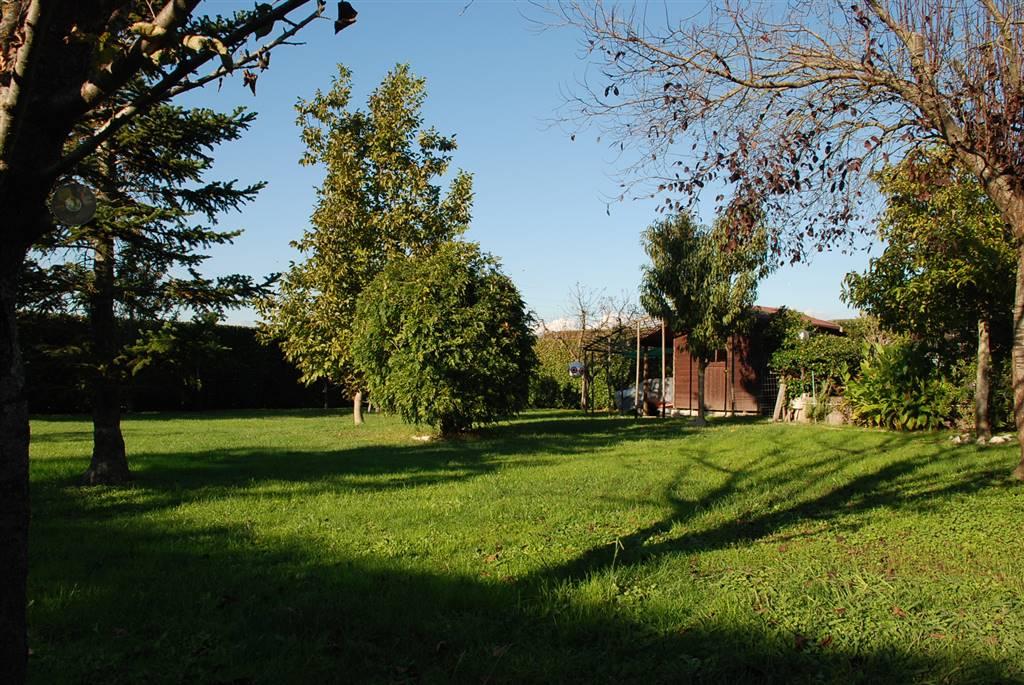 Soluzione Indipendente in vendita a Collesalvetti, 7 locali, zona Località: TORRETTA VECCHIA, prezzo € 215.000 | Cambio Casa.it