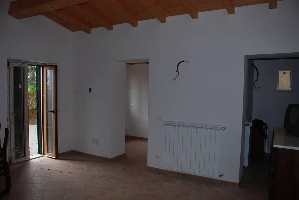 Soluzione Indipendente in affitto a Collesalvetti, 4 locali, zona Zona: Colognole, prezzo € 500 | Cambio Casa.it