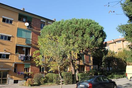 Appartamento in vendita a Carate Brianza, 3 locali, prezzo € 90.000   Cambiocasa.it