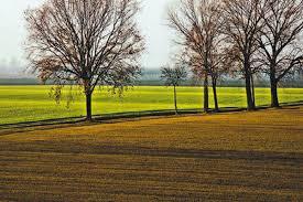 Terreno Edificabile Residenziale in vendita a Carpi, 9999 locali, zona Località: MORBIDINA-CUNEO, prezzo € 270.690 | Cambio Casa.it