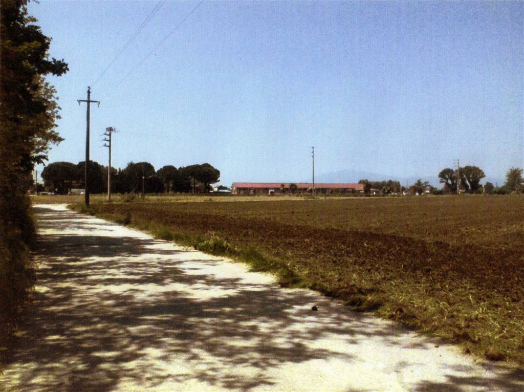 terreno edificabile artigianale Vendita Pastorano