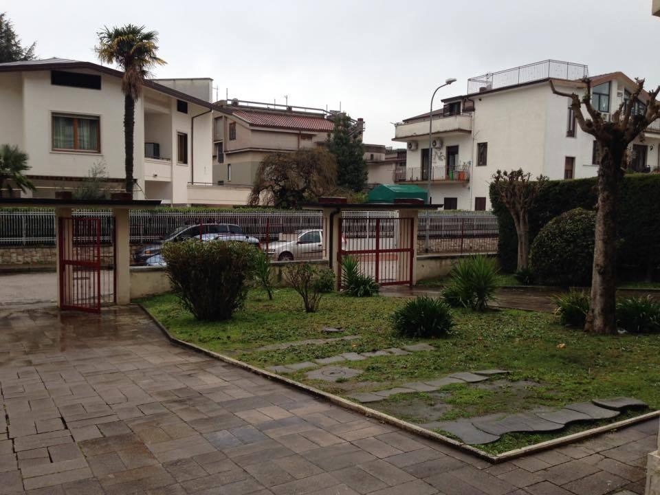 Bilocale caserta affitto 300 50 mq for Affitto caserta arredato