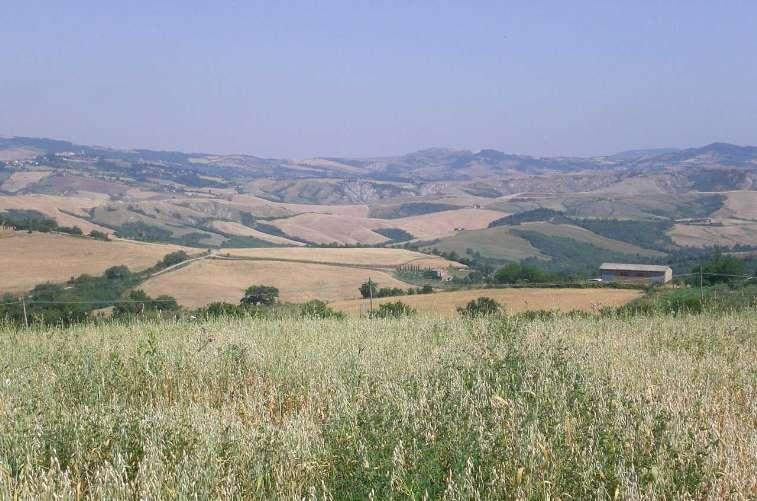 Terreno Edificabile Residenziale in Vendita a Acquapendente