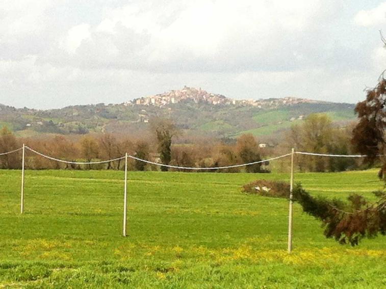 Azienda Agricola in vendita a Manciano, 9999 locali, prezzo € 1.900.000 | CambioCasa.it
