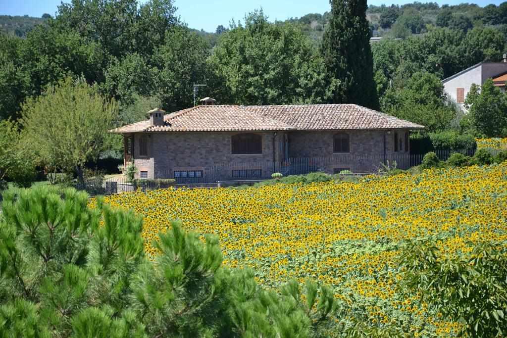 Villa in vendita a Graffignano, 12 locali, prezzo € 500.000 | CambioCasa.it