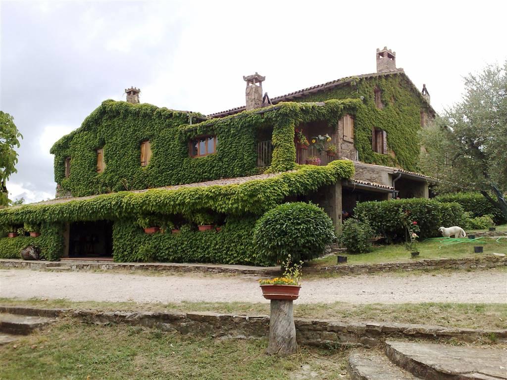 Azienda Agricola in vendita a Orvieto, 1 locali, Trattative riservate | Cambio Casa.it