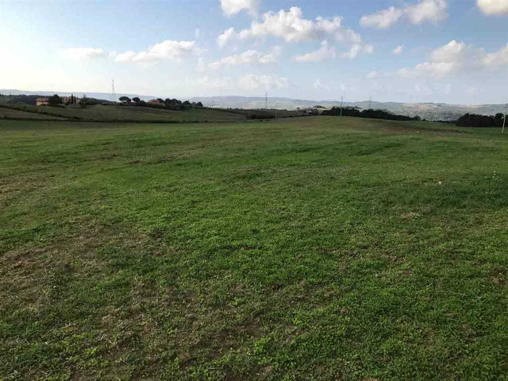 Terreno Agricolo in vendita a Tuscania, 9999 locali, prezzo € 265.000 | Cambio Casa.it
